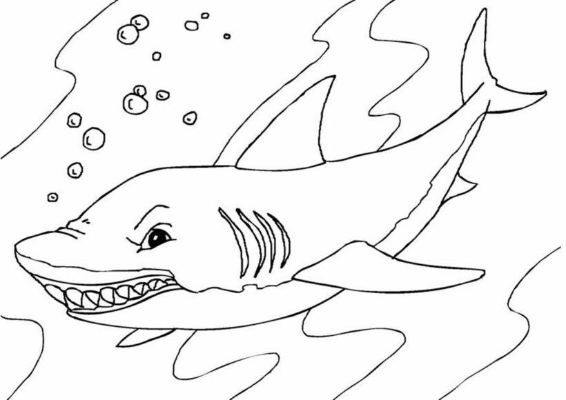 Hình tập tô con cá mập cho bé tô màu (4)