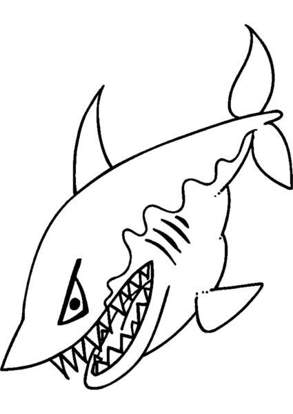 Hình tập tô con cá mập cho bé tô màu (7)