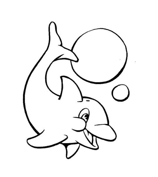 Hình tô màu cá heo dễ thương cho bé tập tô (1)