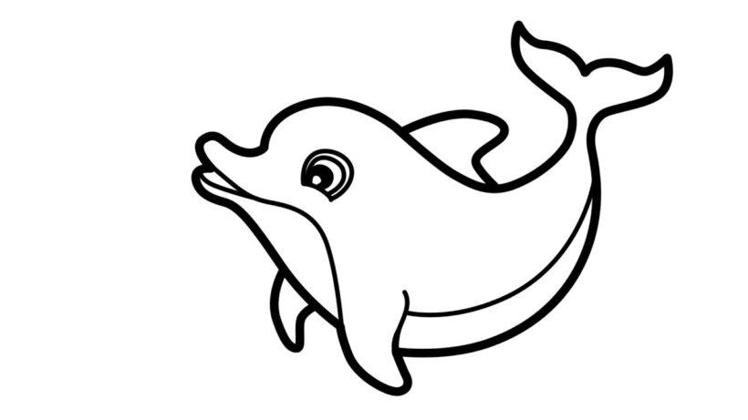 Tổng hợp các bức tranh tô màu con cá heo đẹp nhất