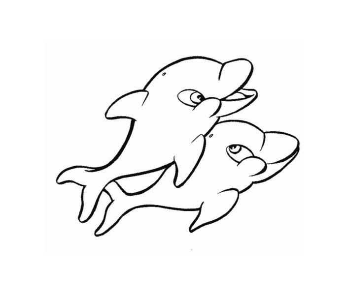 Hình tô màu cá heo dễ thương cho bé tập tô (7)