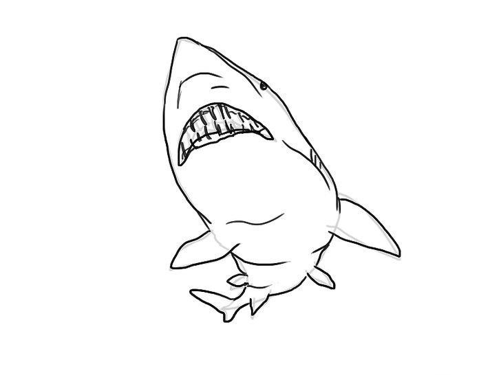 Hình tô màu cá mập đẹp nhất cho bé tập tô (6)