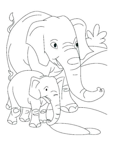 Hình tô màu con voi dễ thương cho bé tập tô (3)