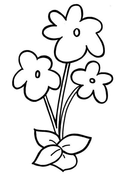 Hình vẽ bông hoa đẹp cho bé tô màu (2)