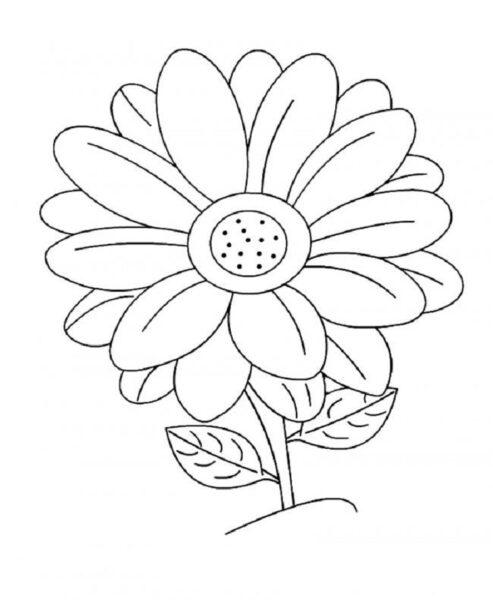 Hình vẽ bông hoa đẹp cho bé tô màu (4)