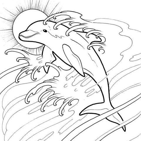 Hình vẽ chưa tô màu cá heo ngộ nghĩnh cho bé tập tô (7)