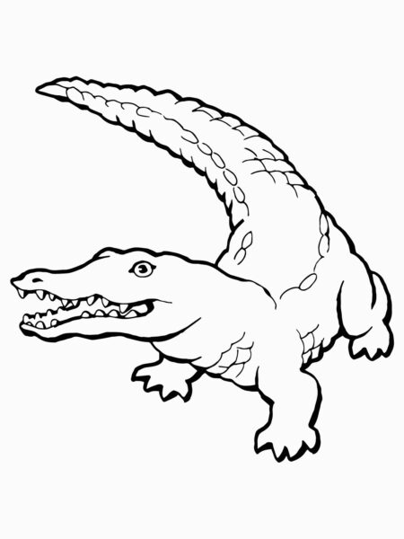 Free Printable Crocodile Coloring Pages For Kids for Coloring Pages Crocodile