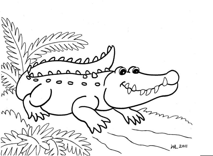 Hình vẽ chưa tô màu cá sấu cho bé tập tô (5)