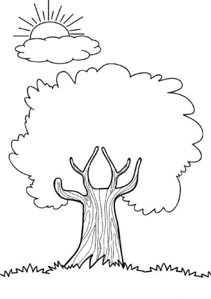Hình vẽ chưa tô màu cây xanh cho bé tập tô (1)