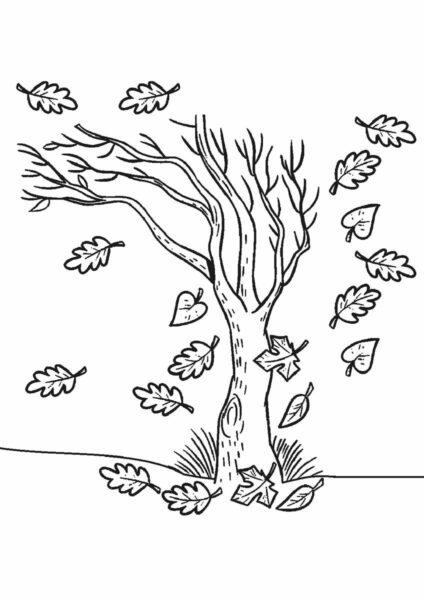 Hình vẽ chưa tô màu cây xanh cho bé tập tô (6)