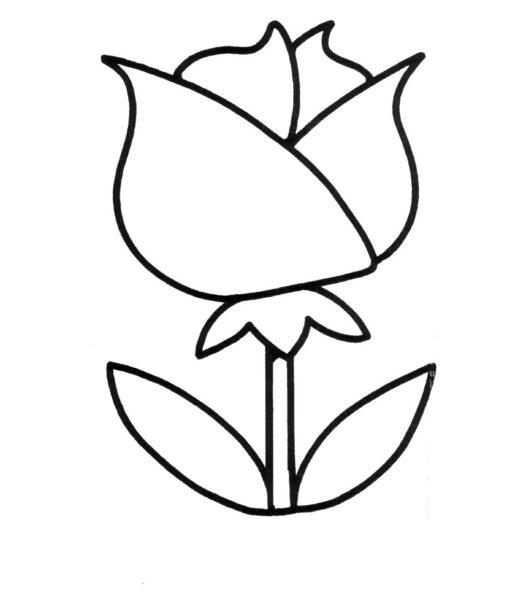 Hình vẽ chưa tô màu cho bé 2 tuổi tập tô (4)