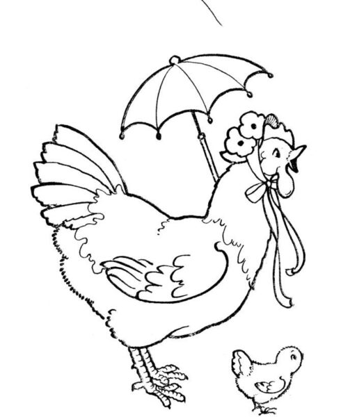 Hình vẽ chưa tô màu con gà ngộ nghĩnh cho bé tập tô (2)