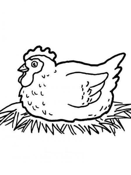 Hình vẽ chưa tô màu con gà ngộ nghĩnh cho bé tập tô (5)