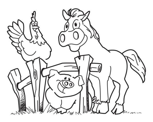 Hình vẽ chưa tô màu con vật cho bé tập tô (5)