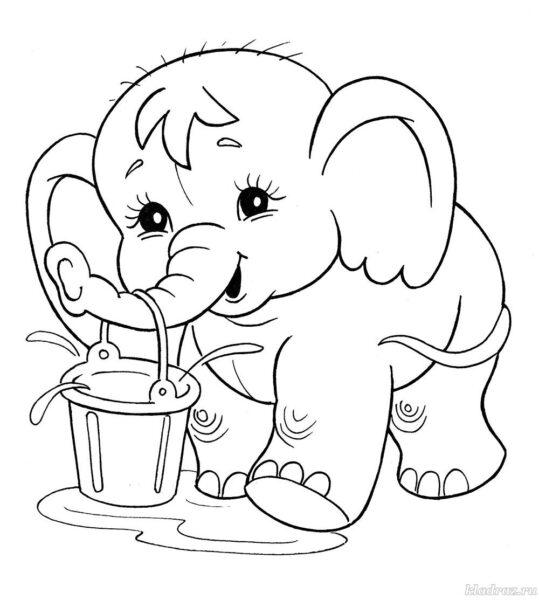 Hình vẽ chưa tô màu con voi đẹp cho bé tập tô (1)