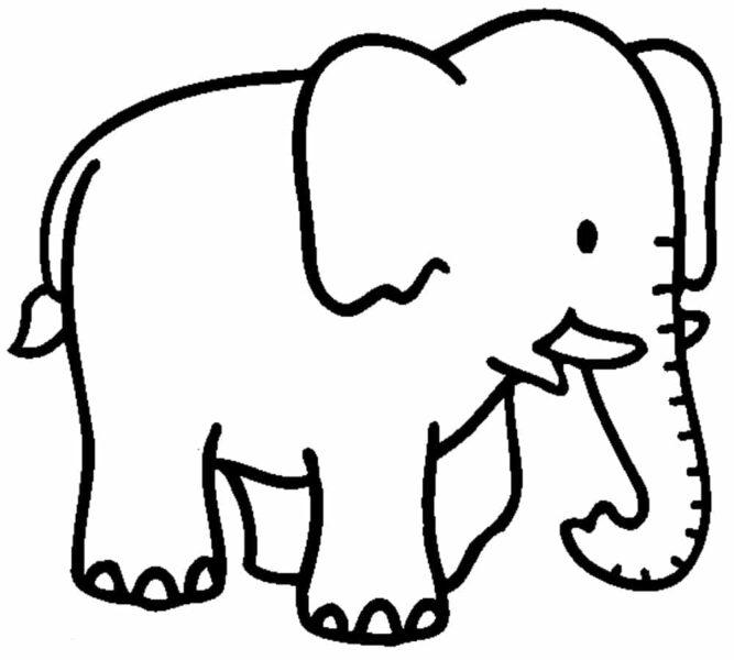 Hình vẽ chưa tô màu con voi đẹp cho bé tập tô (4)