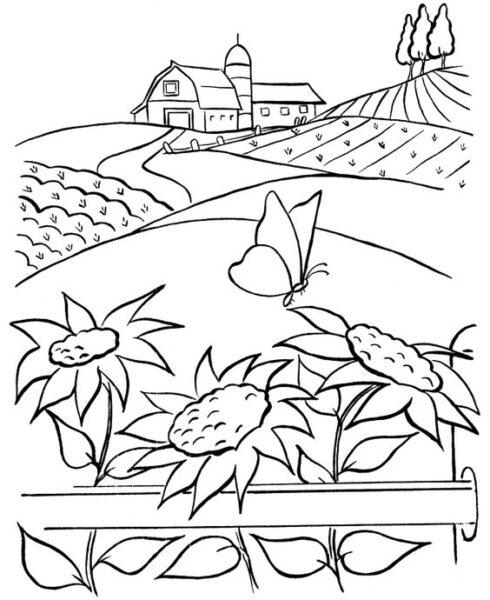 Hình vẽ chưa tô màu phong cảnh đẹp cho bé tập tô (1)