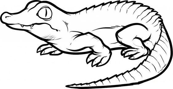 Hình vẽ đen trắng cá sấu cho bé tô màu (4)