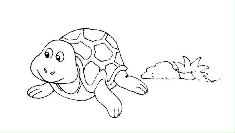 Hình vẽ đen trắng cho bé 3 tuổi tô màu (7)
