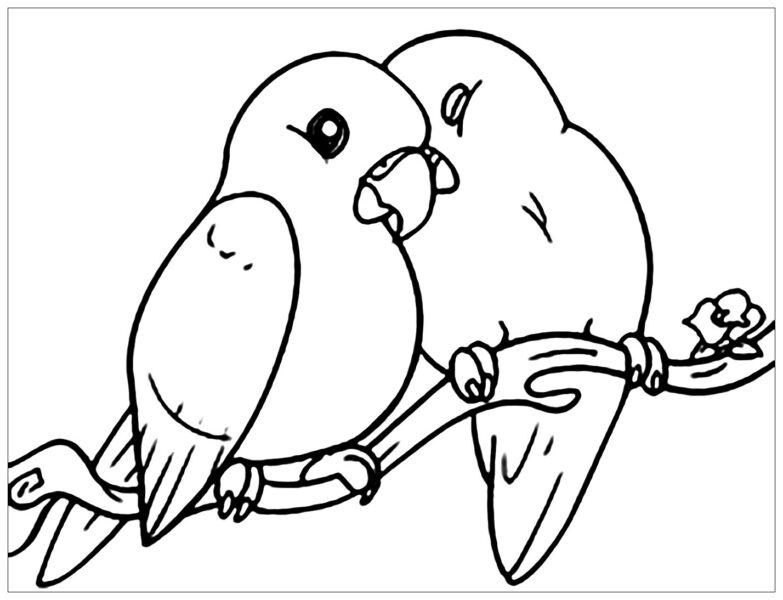 Hình vẽ đen trắng con chim cho bé tô màu (2)