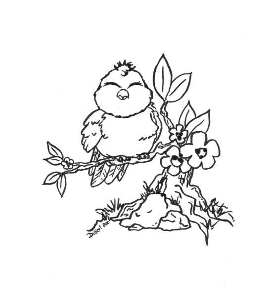 Hình vẽ đen trắng con chim cho bé tô màu (7)