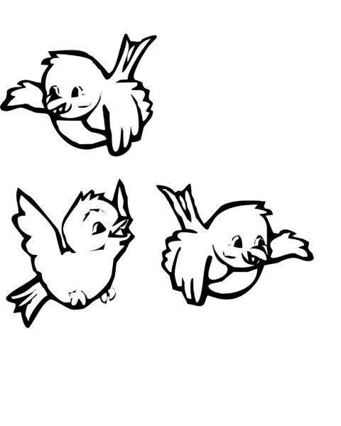 Hình vẽ đen trắng con chim cho bé tô màu (9)