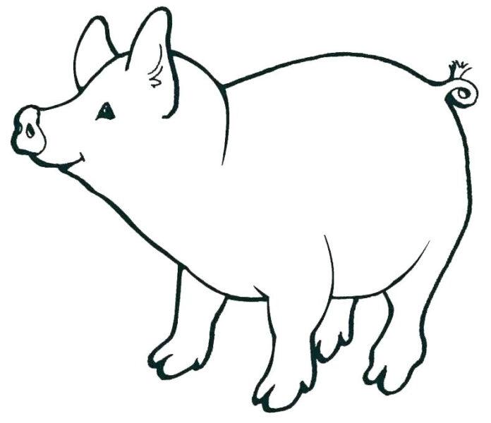Hình vẽ đen trắng con heo cho bé tô màu (4)