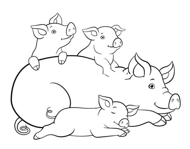 Hình vẽ đen trắng con heo cho bé tô màu (8)