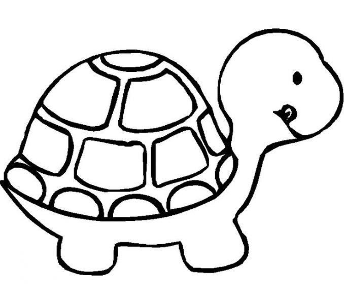 Hình vẽ đen trắng con vật chưa tô màu cho bé tập tô (4)