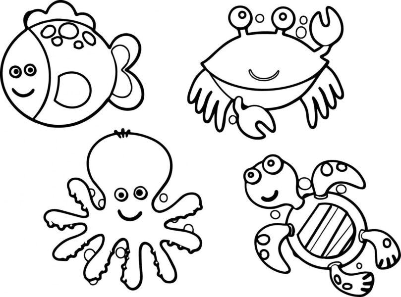 Hình vẽ đen trắng con vật chưa tô màu cho bé tập tô (5)