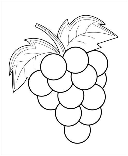 Hình vẽ đen trắng trái cây cho bé tô màu (1)
