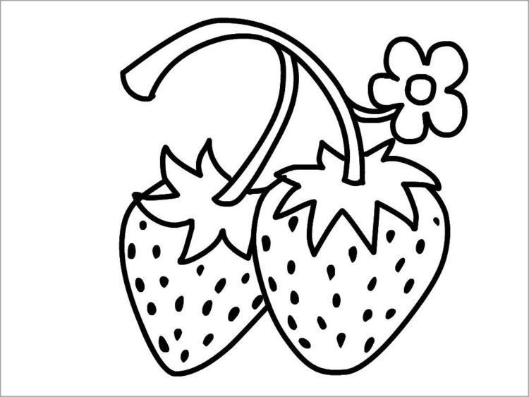 Hình vẽ đen trắng trái cây cho bé tô màu (4)