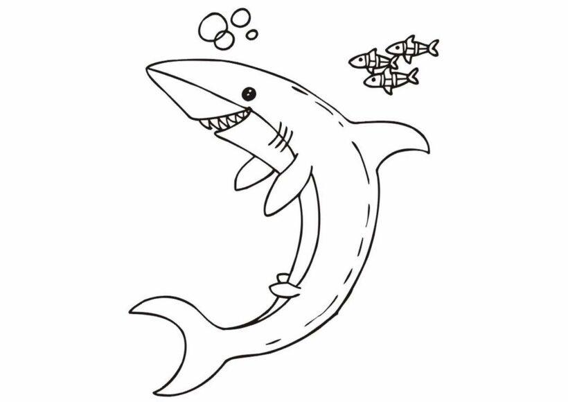 Những tranh tô màu cá mập dễ thương cho bé tập tô (2)
