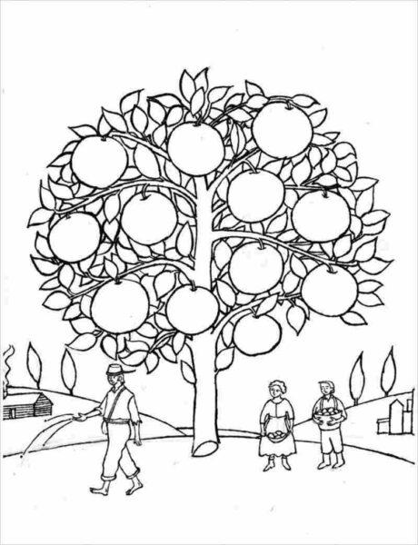 Những tranh tô màu cây xanh đẹp nhất cho bé tập tô (4)