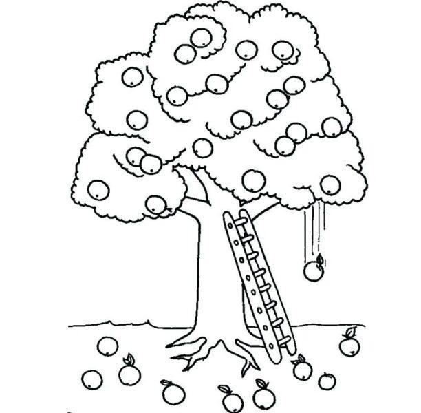 Những tranh tô màu cây xanh đẹp nhất cho bé tập tô (7)