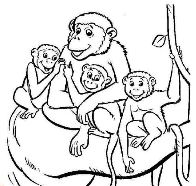 Những tranh tô màu con khỉ đẹp nhất cho bé tập tô (1)