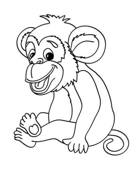 Những tranh tô màu con khỉ đẹp nhất cho bé tập tô (4)