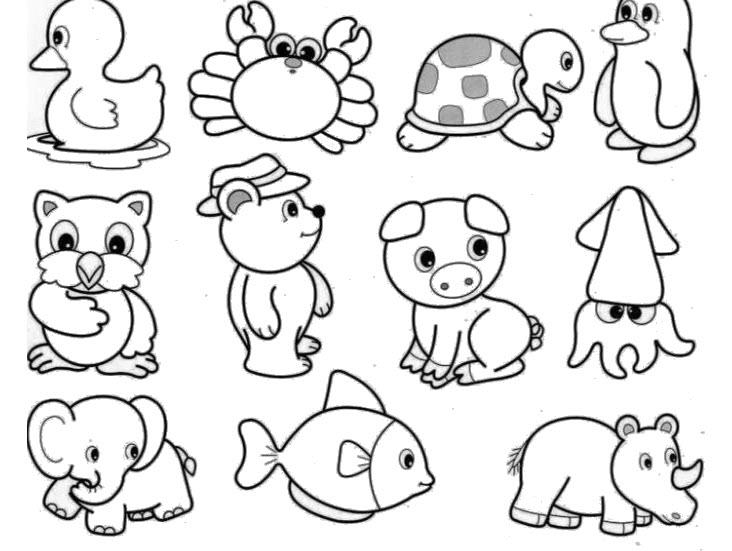 Những tranh tô màu con vật cho bé tập tô (4)