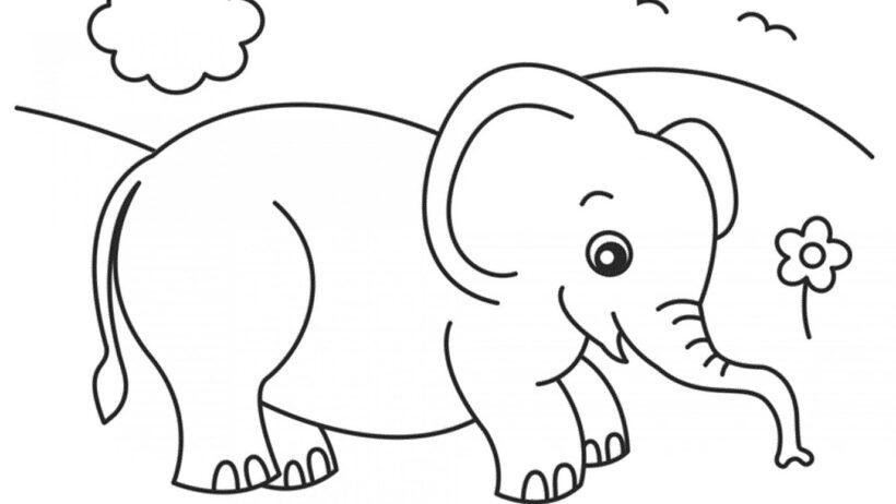 Những tranh tô màu con voi đẹp nhất cho bé tập tô (2)