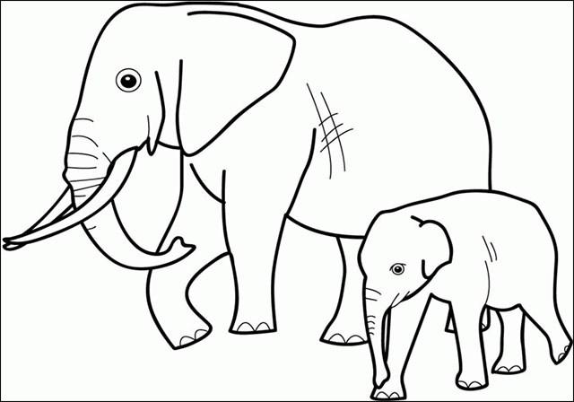Những tranh tô màu con voi đẹp nhất cho bé tập tô (3)