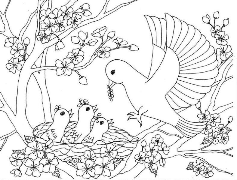 Những tranh tô màu phong cảnh cho bé tập tô (3)