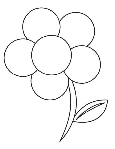 Tranh tô màu bông hoa 5 cánh