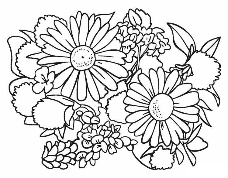 Tranh tô màu bông hoa đẹp nhất cho bé tập tô (26)