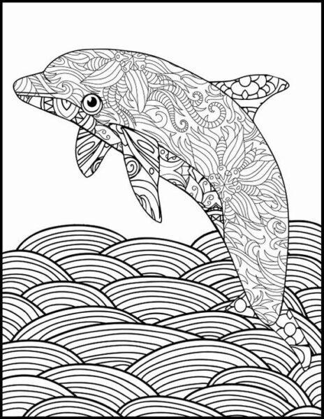 Tranh tô màu cá heo đẹp nhất cho bé tập tô (34)