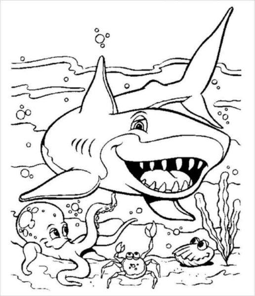 Tranh tô màu cá mập đẹp nhất cho bé tập tô (39)