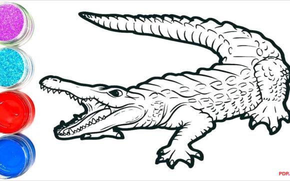 Tranh tô màu cá sấu đẹp nhất
