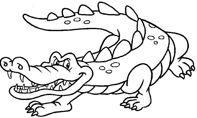 Tranh tô màu cá sấu đẹp nhất cho bé tập tô (25)