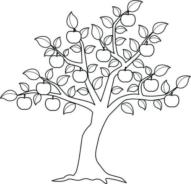 Tranh tô màu cây xanh đẹp nhất cho bé tập tô (34)