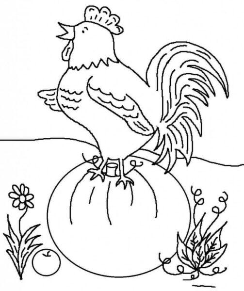 Tranh tô màu con gà đẹp nhất cho bé tập tô (15)