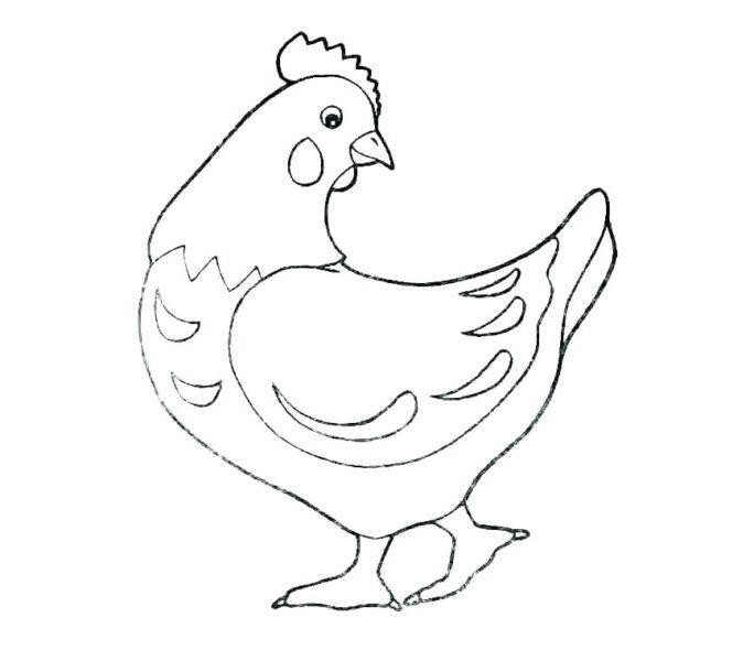 Tranh tô màu con gà mái